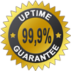 99.9% uptime guaranteed